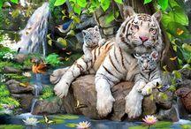 Animali preziosi / i più belli