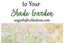 Shade Gardens / Not all of us are blessed with full sun all day long. If you've got a shady section of the yard, this board is full of tips and guides on how to make the most of it.