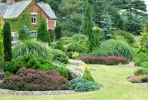porovnaj zahradu