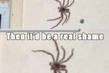 Spiders yuck!!!! / by Crystal Davis
