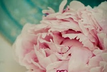 jade and pink...
