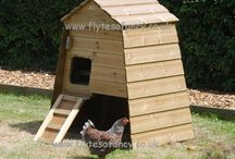 Annie's Coop & Ark / Compact chicken coops for 3 or 4 hens