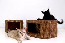 To Pamper the Kitties / An inspirational gallery for gift ideas.  I adore my cats and love to pamper them.  :)