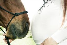 Photoshoot Inspo : Equine Maternity Photography / Photography inspiration for equine maternity photoshoots.
