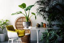 Tropical style ! / Végétal, tropical, esprit vacances...