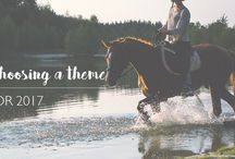 The Weekend Equestrian / Posts from The Weekend Equestrian