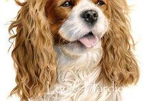 Собака рисунки