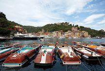 Boats & Yachts / Sea life