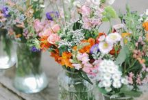 Gardens&Flowers