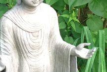 Buddha garden