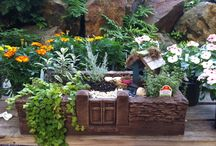 Fairy Gardens / Tiny gardens