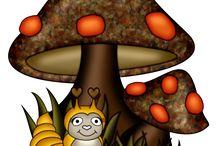 pic, mushroom