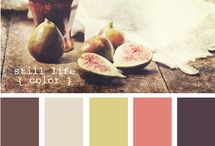 Color Palettes / by Kristina Fierstein