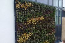 Commercial buildings with living walls / Beautiful living walls on commercial buildings