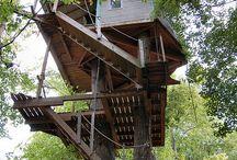 Tree Houses / by Dichroic GlassMan