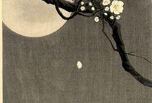 motif tissus japonais