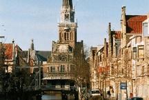 Nederland kikkerland