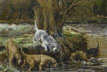 Celebrate the Rare Otterhound / Celebrating all things Otterhound