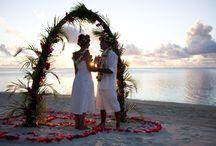 Visit Cook Island