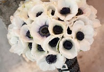 Wedding flowers / by Lisa Paragone
