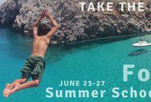FoCAS Summer School 2014 - Research