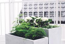 Planter og hage