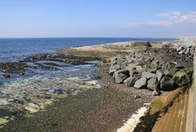 Rottingdean Beach