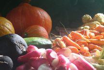 Ich Bin Krautlocke - Das ist mein Blog / Permakultur, Selbstversorgung und Kräuterallerlei