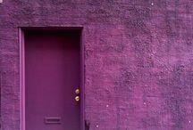☆ Purple Passion