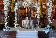Backdrops / Wedding Backdrops