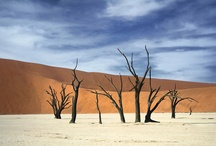 Namibia / A Journey Through Namibia, South west Africa, Road tripping.