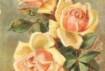 rózsa színes / flower rose Vintage transfer transzfer colorful