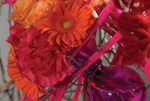 flowers arrangement, centerpieces, tabletops  / by Lamia Faisal