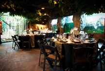 Houston Zoo's Natural Encounters Venue / Reserve your space today!