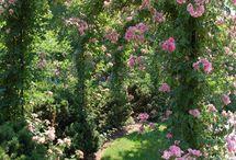 geheime Gärten