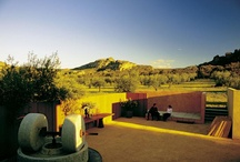 Mount Zero Farm / Beautiful shots of our olive grove and farm located in the Grampians, north-west Victoria.