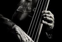 Tony Levin & Bass