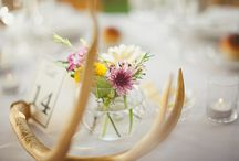 New Mexico or Arizona inspired Wedding / wedding ideas for a southwest new mexico wedding