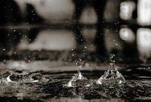Pioggia / Batte la pioggia  sulla gronda di rame  cullando sogni.