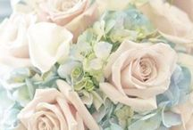 стили и цвета свадьбы