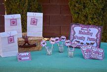 Barnyard Farm Birthday Party Theme