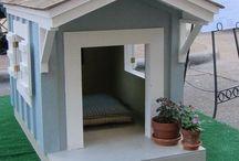 dog house pallets