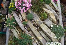 Troughs / Alpine troughs and others for outdoor planting / by Alicia Whitaker
