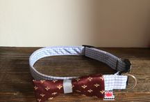 Twoja obroża (#dogs&#cats #collars)