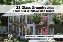 Haven / Blomster, planter, haven, drivhuse