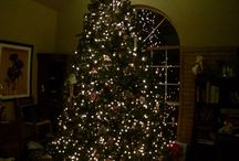 Our Christmas 2013 / Our family and tree