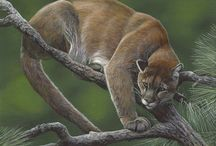 "Terry Isaac / ""When it is my time to leave this world, I wish to do so knowing that I have left paintings that inspire others to appreciate the true wonder and beauty of the natural world."" - Terry Isaac, Wildlife Painter"