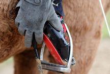 horsebackriding and balletheel / riding a horse with balletheels on