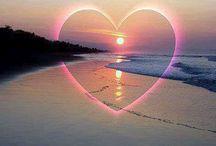Szív / Heart
