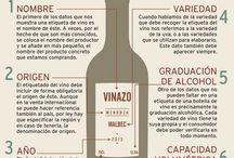 Todo sobre el vino